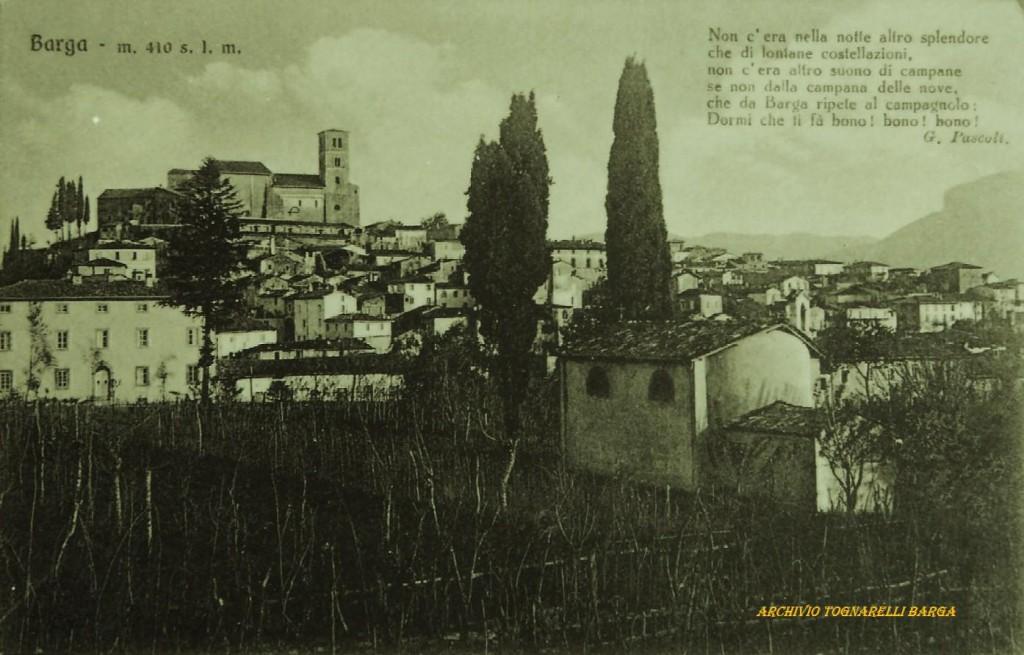 Immagine (302)
